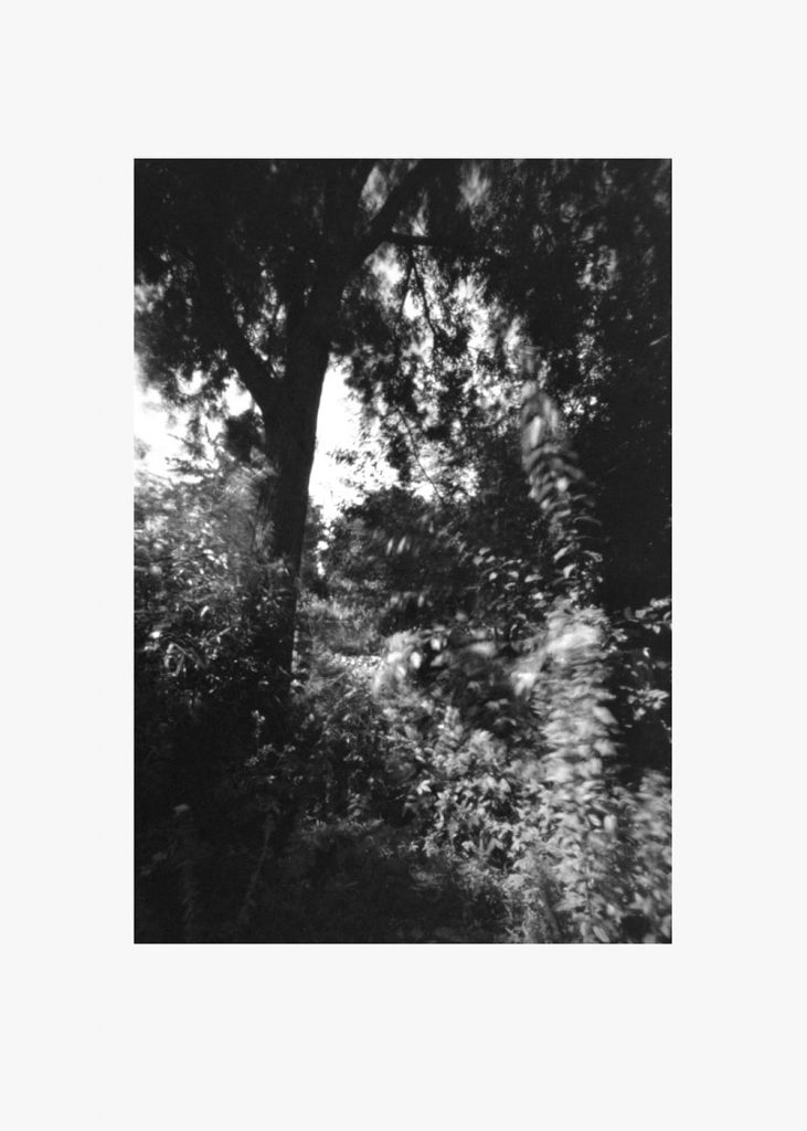 Watertuin. in oplage voor de Spijkerkrant